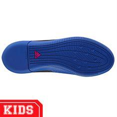 Adidas Ba9228 ace 17.3