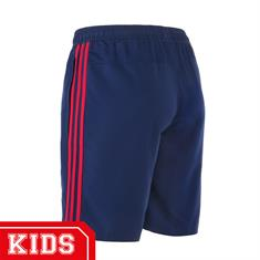Adidas Br7169 AJAX AWAY/UIT SHORT