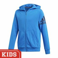 Adidas Dv0807 PERFORMANCE HOODY