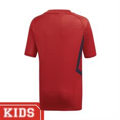 Adidas Eh5699 ARSENAL SHIRT