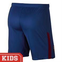 Nike 847389 FC BARCELONA SHORT
