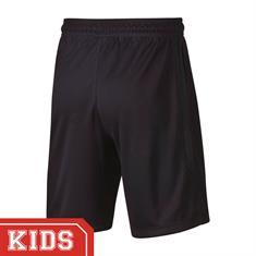 Nike Ao6355 PSG SHORT