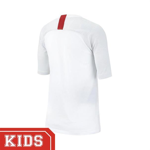 Nike Ao6498 SHIRT PSG