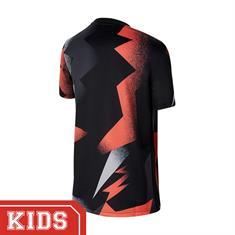 Nike Bv6168 SHIRT PSG