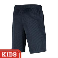 NIKE CD5062 PARIS SAINT-GERMAIN SHORT